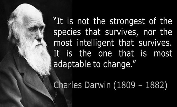 Darwin's Theories And Marketing