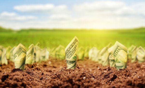 When Startups Should Invest In Branding