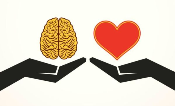 how emotion drives brand choices and decisions branding strategy