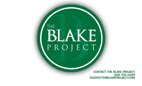 Branding Strategy Insider - The Blake Project