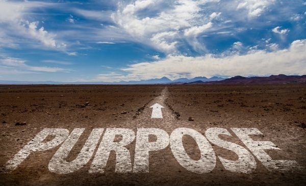 Linking Purpose And Profit In Private Equity