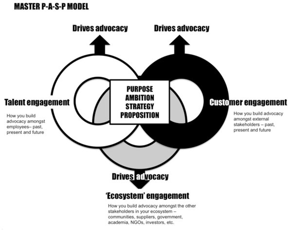 Purpose Ambition Strategy and Proposition Model